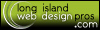 Long Island Web Design Pros - The Web Deisgn Professionals of Long Island New York